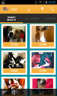 Pets4Homes- screenshot thumbnail