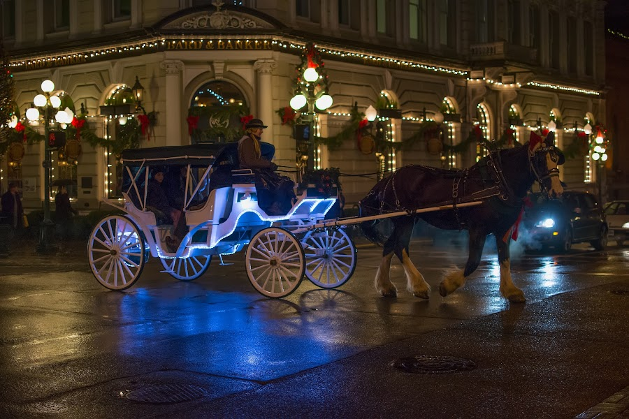 Horse and Carriage by Keith Boone - City,  Street & Park  Street Scenes ( horse and carriage, street, christmas, reflections )