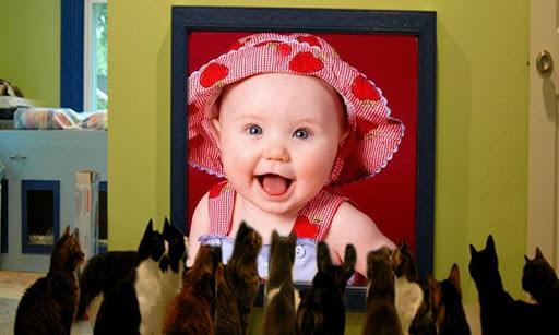 【免費攝影App】Funny Pic Camera-APP點子