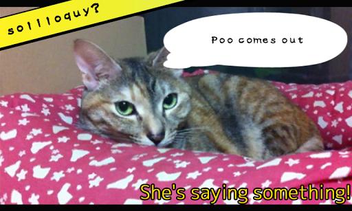 KamiBag MOMO 2 FREE Cat App