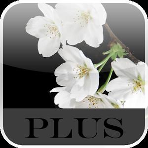 2016年4月10日Androidアプリセール 多機能・高性能カメラアプリ「ズームカメラプロ」などが値下げ!