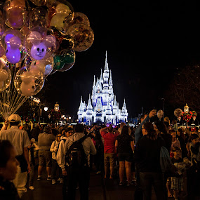 Disney by Steve Bales - City,  Street & Park  Amusement Parks ( colorful, mood factory, vibrant, happiness, January, moods, emotions, inspiration )