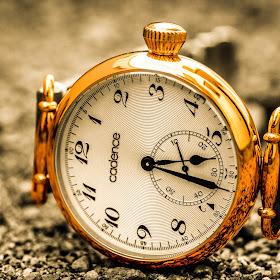 BnW Watch-3.jpg