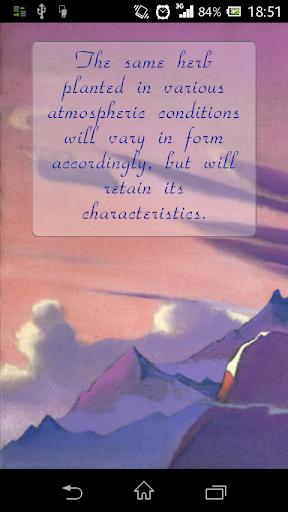 Wise Sufi
