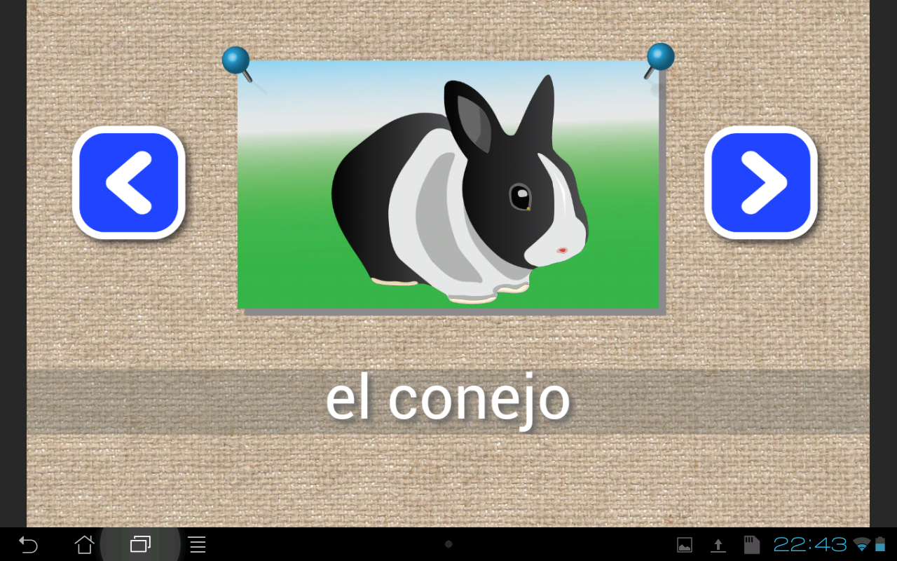 Learn Spanish words & spelling - screenshot