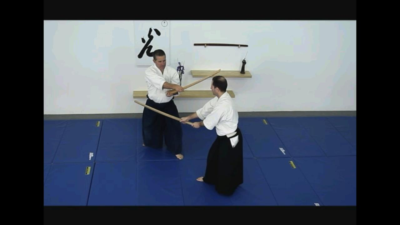 Aikido Weapons 6 - screenshot