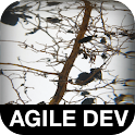 The Art of Agile Development logo
