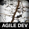 The Art of Agile Development logo
