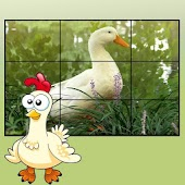 farm animals puzzles for kids