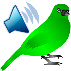 Birds Sounds Calls icon