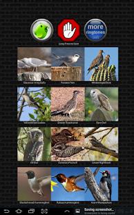 Classic Bird Calls - náhled