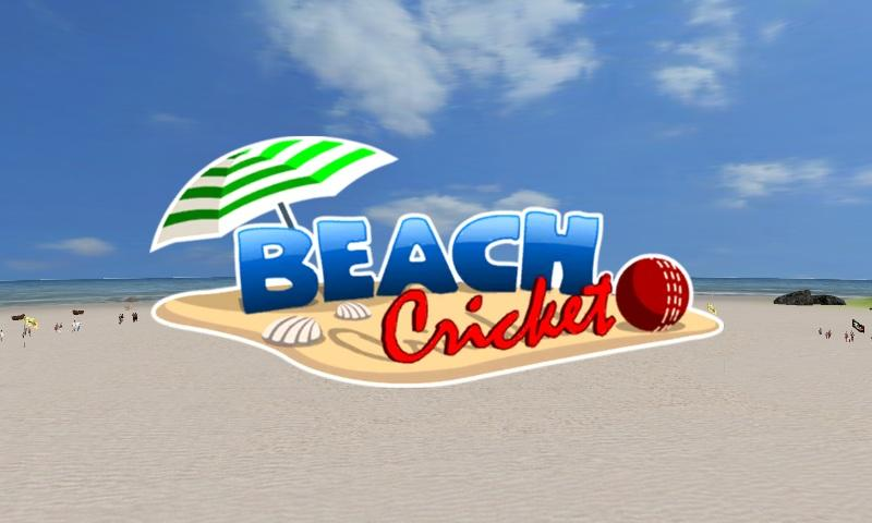 Beach Cricket- screenshot