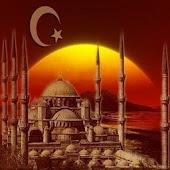Турецкий разговорник(Demo)