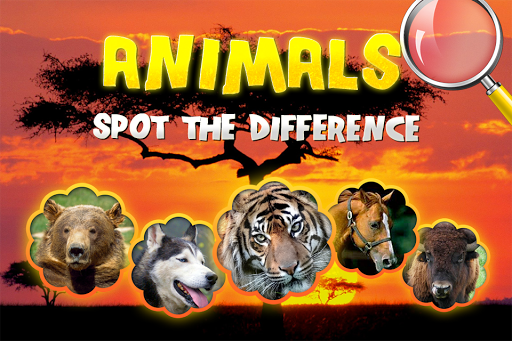 Find difference animals images