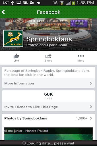 Springbok News