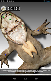 Froguts Frog Dissection Screenshot 16