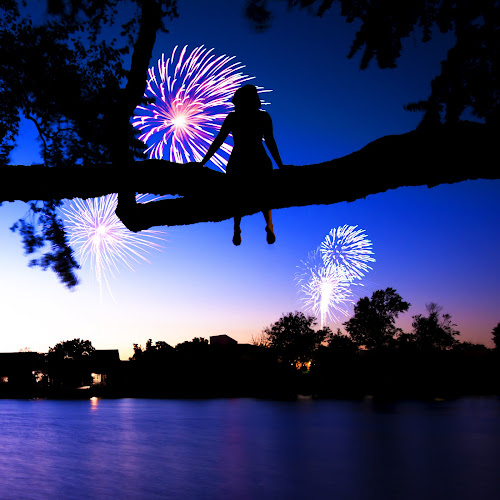Firewatch by Andrew Hale - Public Holidays July 4th ( watching, firework, tree climbing, trees, 4th of july, fireworks, 4th )