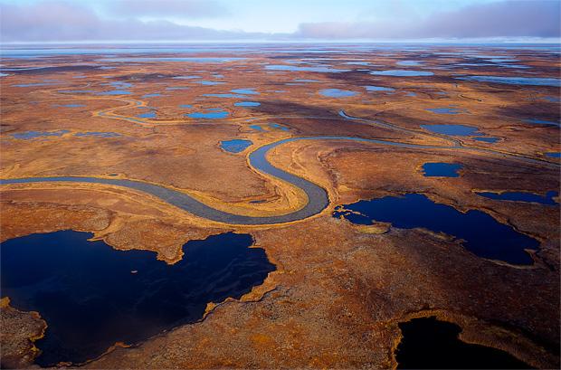Yukon-Kuskokwim Delta