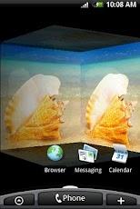 3D Seashell Conch