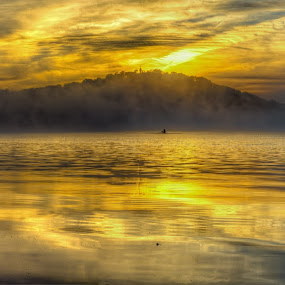 Lake Burley Griffin Rowers by Peter Hoek - Landscapes Waterscapes