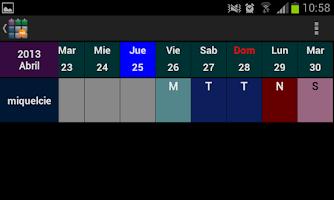 Screenshot of SaTurnos Pro Calendar