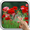 Red Poppies 3D Wallpaper icon
