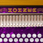 Hohner G/C Button Accordion icon