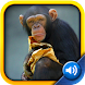 Toddler Tapping Zoo icon