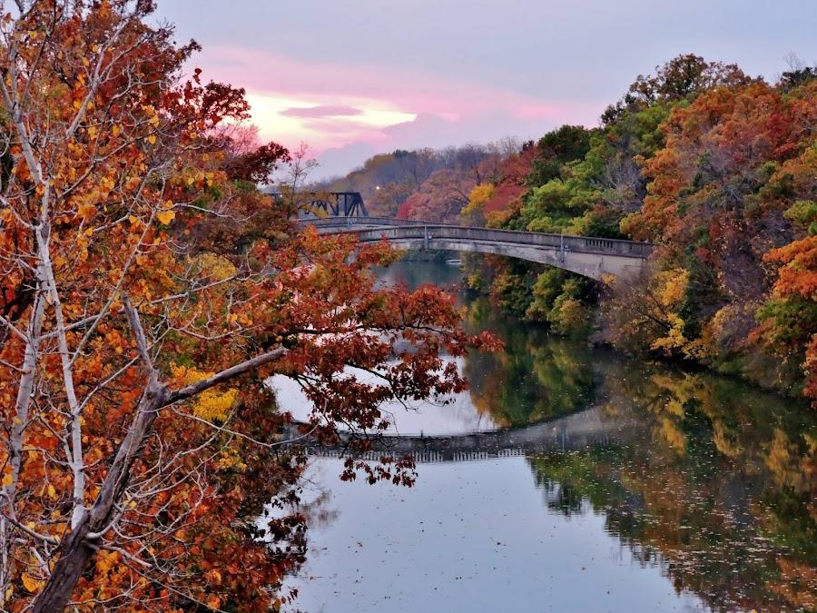 by Karen Jaffer - Buildings & Architecture Bridges & Suspended Structures ( , fall, color, colorful, nature )