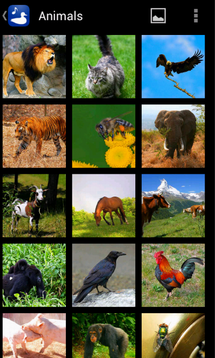 Animal Images Sounds AD-FREE - screenshot