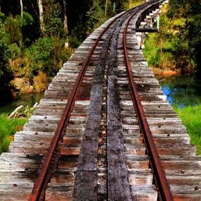 Wild River bridge by Peter Keast - Transportation Railway Tracks ( railway, bridge, abandoned, river,  )