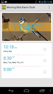 Bird Quiz Alarm Clock Premium - screenshot thumbnail