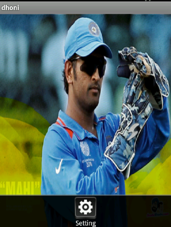 dhoni - screenshot