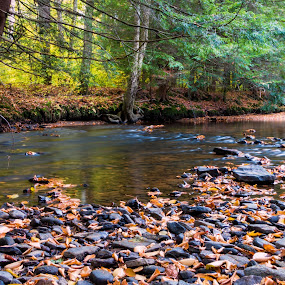Fall Creek by Rick Shick - Landscapes Waterscapes