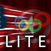 USA Flag Stylized LITE