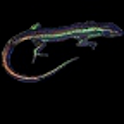 Live Skink Desktop Wallpaper icon
