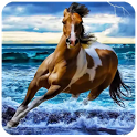 Horses Wallpapers HD icon
