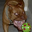 Psycho dog Live Wallpaper icon