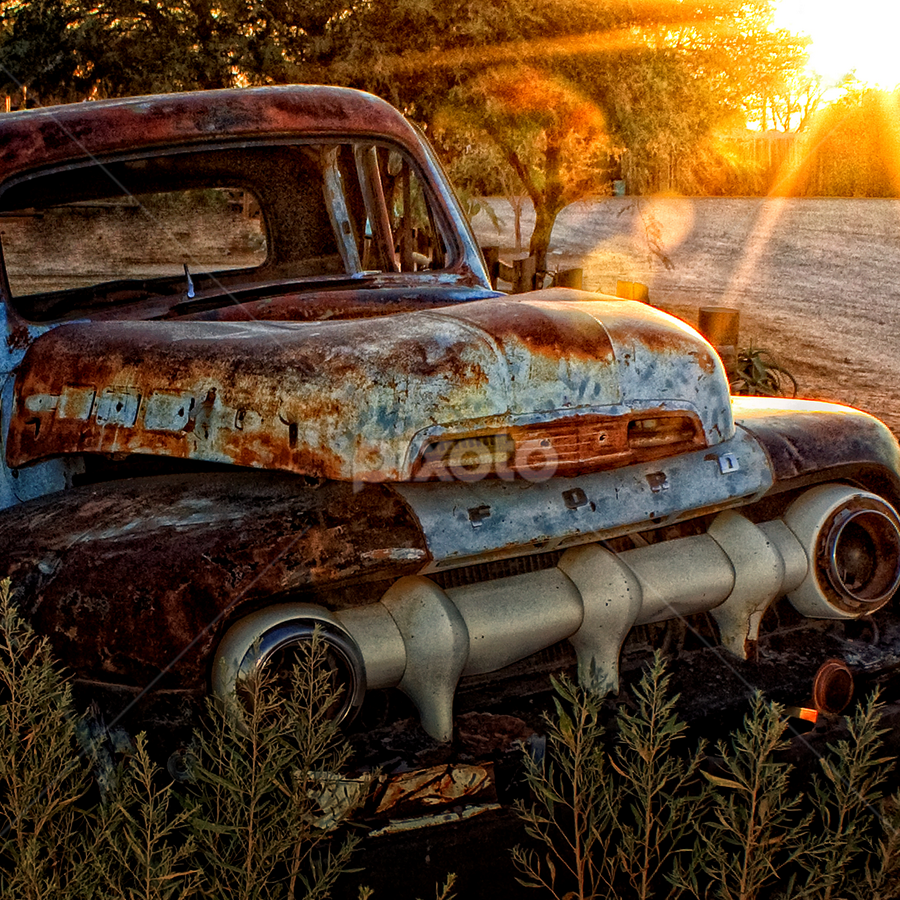 Had its Day by John Phielix - Transportation Automobiles ( car, old, ford, rust, sun, , land, device, transportation )