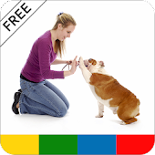 Dog Obedience Training - FREE