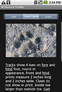MyNature Animal Tracks- screenshot thumbnail