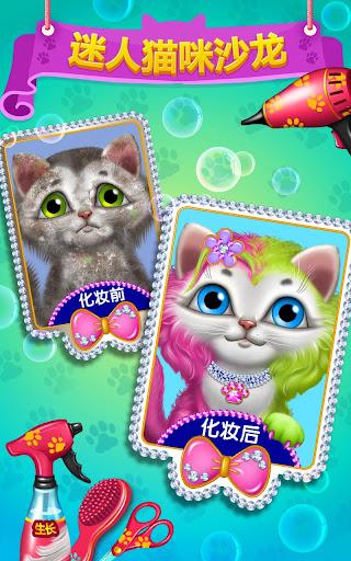 迷人猫咪沙龙— 皮毛美容