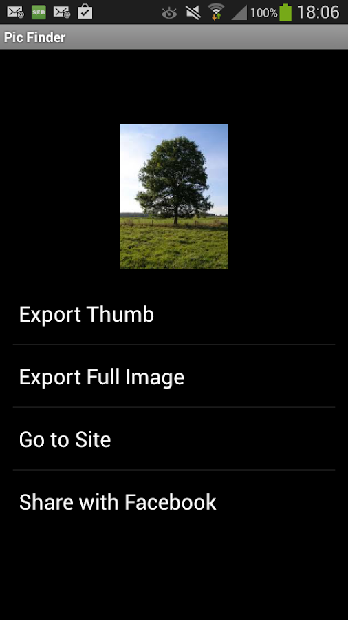Pic Finder- screenshot