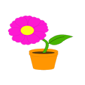 Flower Color Page icon