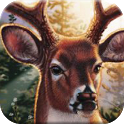 DEER SEASON HUNTING 2014 icon