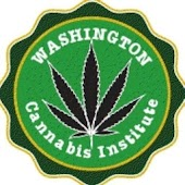 Washington Cannabis Institute