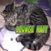 Lounge Katt Litter Box