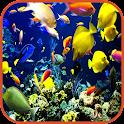 Fish Wallpaper icon