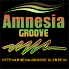 Amnesia Groove icon