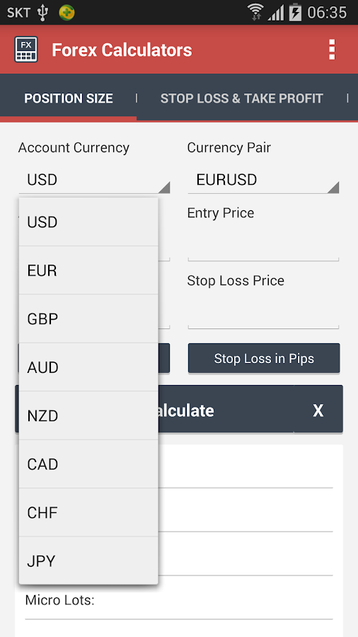 Pip calculator forex